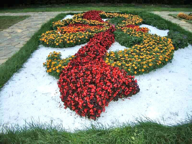 Цветники и миксбордеры